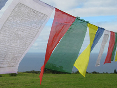 Buddhist prayer flags in the wind